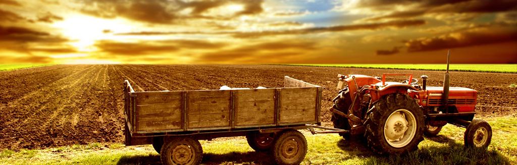 agricultura, agrícola, economia, macroeconomia, agronomia, rural,  empresas do segmento agrícola, empresas do segmento agricultura